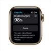 44mm stainless gold milanese Apple watch series 6 - Apple Store pakistan